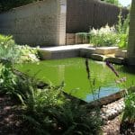 Le Jardin de Sainte Thérèse - jardin du silence