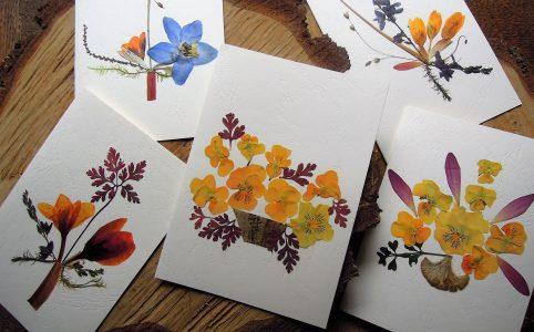 Cartes en fleurs séchées (Carmel du Havre)